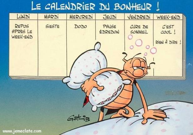https://genicotf.files.wordpress.com/2015/04/calendrier_bonheur.jpg